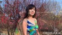 【拍客】美女与梅花 2015武汉东湖梅花节写真