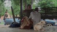 泰国60岁流浪汉常年性虐母狗 已折磨死4只