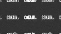 【Cokain.fr】世界悲剧碉堡傻缺视频精选(第044期)