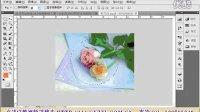 [PS]计算机网络技术 | ps cs3  |photoshop cs5基础入门视频教程15