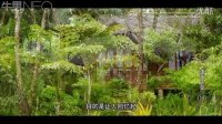 【牛男独家】亚洲天堂——泰国普吉岛(二)