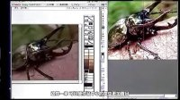 PS日本人气节目:数码绘图文法 - 第42集