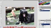 [PS]PS入门 第三课:PhotoShop基本操作