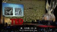 TED演讲集:古代线索 Rajesh Rao:破解印度河文字的罗塞塔石碑