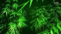 动态三维3D竹子竹叶竹林设计视频素材
