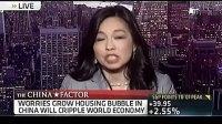 美国教授激辩中国楼市泡沫 现场失控