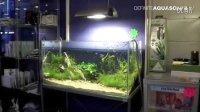 欧美水族行业资讯1-2011欧洲水族展会视频-Q 1686340079