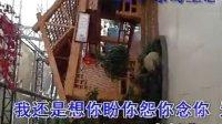 视频: 大丰绿岛生态园唯美设计大厅服务员QQ:949293573