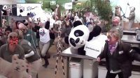 Harlem Shake Toronto Zoo-----panda