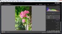 0910_通过鲜艳度与饱和度命令增强照片的色彩