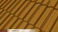 中国大博金太阳能光伏宣传视频