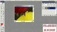 [PS]photoshop从头学 photoshop教程 ps教程 ps入门到精通 ps平面设计教程 (3)