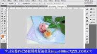 [PS]初学者之路视频网PS视频 平面设计photoshopcs5教程 第15课羽化