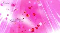 纱幔玫瑰花瓣飘动 浪漫LED婚礼大屏幕背景素材 婚礼素材