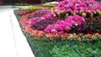 澳门金沙广场室内花园