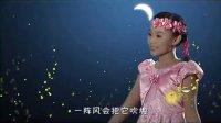 萤火虫MV