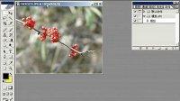 [PS]Photoshop从头学起第40集——快速蒙版模式、屏幕模式