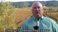 费雷兄弟,来自加州最好产区的葡萄酒