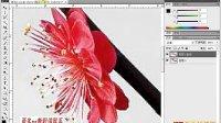 [PS]《PhotoshopCS5视频教程全集》31-魔术棒工具