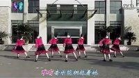 踏歌紫蝶廣場舞-倫巴達舞娘(歌詞字幕)迅雷下載