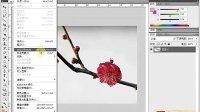 [PS]《PhotoshopCS5视频教程全集》80-内容识别缩放