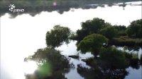 自然世界 维多利亚大瀑布