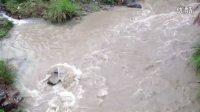 龙岩巿庙前冷水坑重金属污染镉超标22倍大米农田