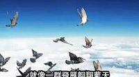 视频: 中华军航国际骨骼养护研究院骨骼养护日乐利来让世界充满爱297066081
