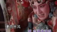 梨花泪主题曲 云菲菲-红颜自古多薄命