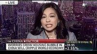 美国教授激辩中国楼市泡沫 直播现场失控
