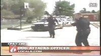 恶犬袭击警察 警察将其制服