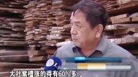 天津家具五厂有限公司红韵中国品牌红木家具报道