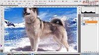 [PS]photoshop 海底世界蒙版 高级 应用 PS视频教程  何银鸿主讲