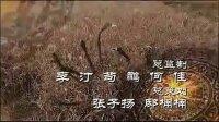 《宝莲灯前传》 (片头曲)