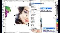 cdr菜单-位图cdr软件cdr视频cdr排版cdr广告设计
