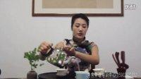 秀秀茶书院-任雪茶道表演
