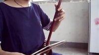 小叶紫檀极品2676号(未作任何处理)苏州长尧民族乐器厂