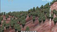 秘境零距离之圆石神山