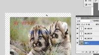 [PS]photoshop cs5中文版教程 建站必备ps技术 ps如何快速入门  第5集