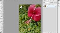 [PS]06-图层的基本操作理解 photoshop cs6 零基础视频教程