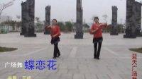 广场舞《蝶恋花》 赣县五云蓝天广场舞