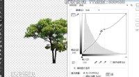 沁鑫-园林景观PS-字体常见应用与曲线应用技巧-秋凌景观网