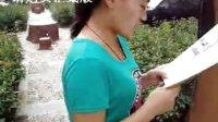 镐京学院济源县区济源城市广场第4日新镐京英语视频