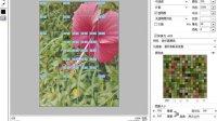 [PS]20-切片选择工具的使用 photoshop cs6 零基础视频教程