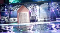 """7.28 西安暴雨,歌迷大喊""""雨神"""",萧敬腾《只能想念你》"""