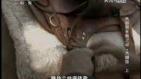 地理中国 2013 大自然未解之谜·大脚怪(上)