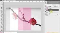 [PS]《PhotoshopCS5视频教程全集》48-复制图层