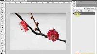 [PS]《PhotoshopCS5视频教程全集》43-转换背景层