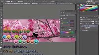 [PS]adobe photoshop教程_ps教程_pscs6大理樱花 高清