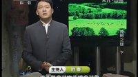 神树之谜(下)